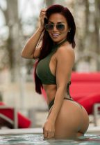 Brazilian Beauty Sasha New In Town +971553458320 Dubai escort
