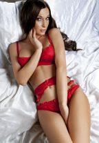 Winsome Latvian Escorts Girl Katty Naughty Stunner Marina +79256147376 Dubai